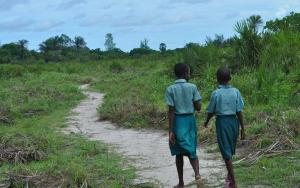 Primary school girls walking to school in the Kwale area of Kenya